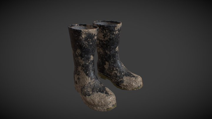 Rubber Boots Dirty 3D Model