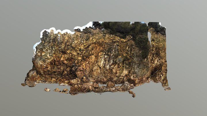 Rockwall 3D Model