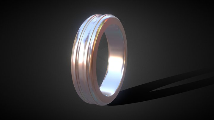 Jewelry Simple Ring 3D Model