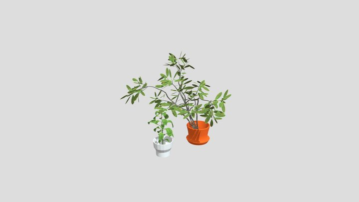 House Plant Potted Interior 3D Model