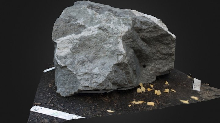 Poor Mountain Formation 3D Model