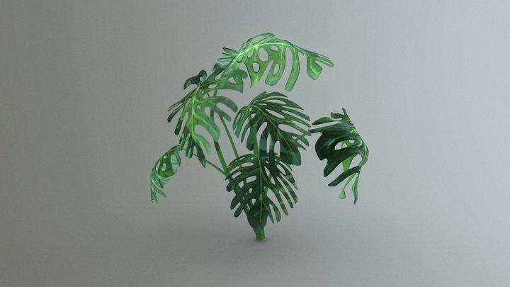 Monstera Tree 3D Model