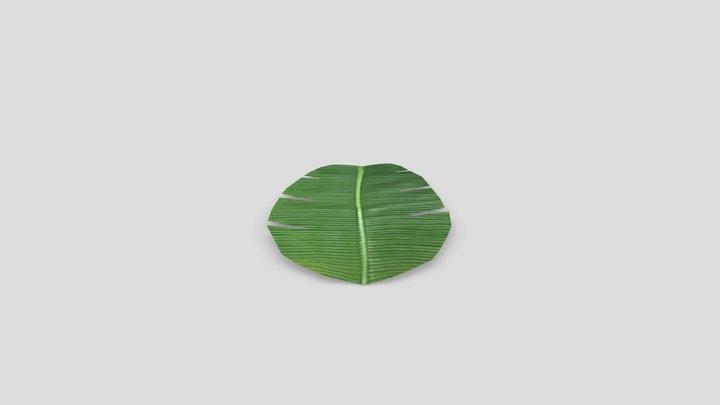 Indian Traditional Banana Leaf 3D Model