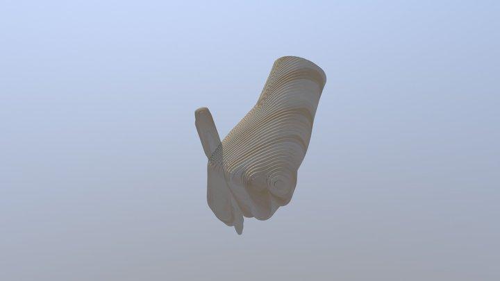 Hand Writing 3D Model