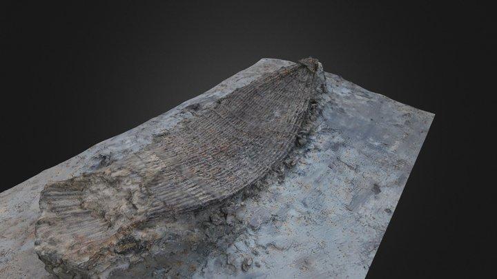 Enkhuizen, Kadijken - Visfuik 3D Model