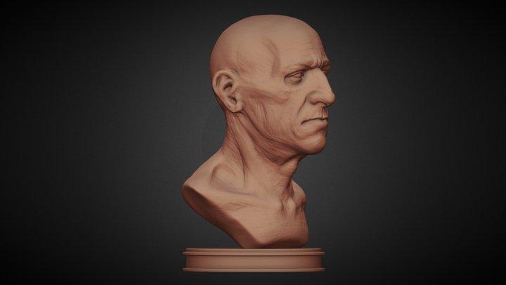 Cabeça Sketch 3D Model
