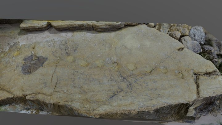 Salema dinossaur tracks| Lagos Ciência Viva 3D Model