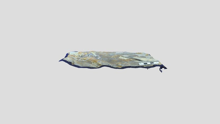 Batrachopus track 3D Model