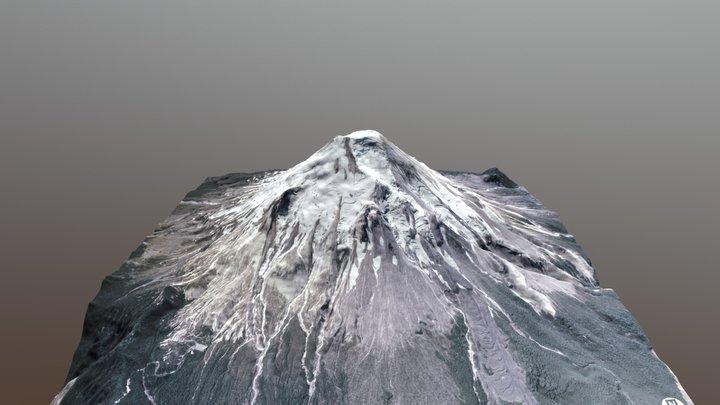 Mount St. Helens Pre-1980 Surface, B&W 3D Model