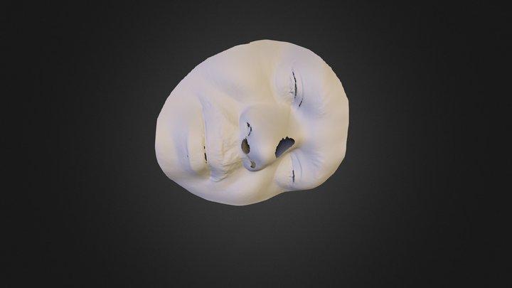 100374 3D Model