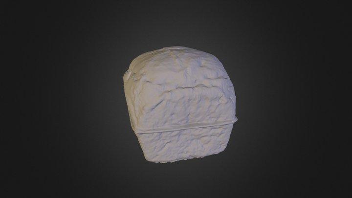 Schetch Fub 3D Model