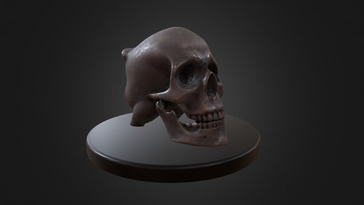 Rich yorick 3D Model