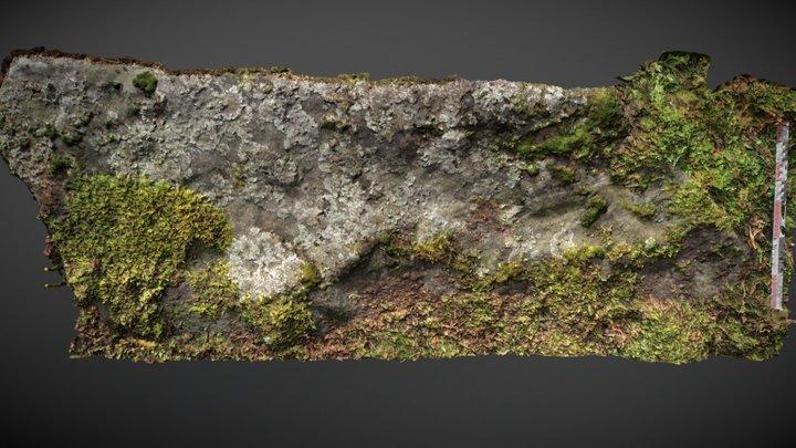 Pancake Ridge 09 (Sept 2012) 3D Model