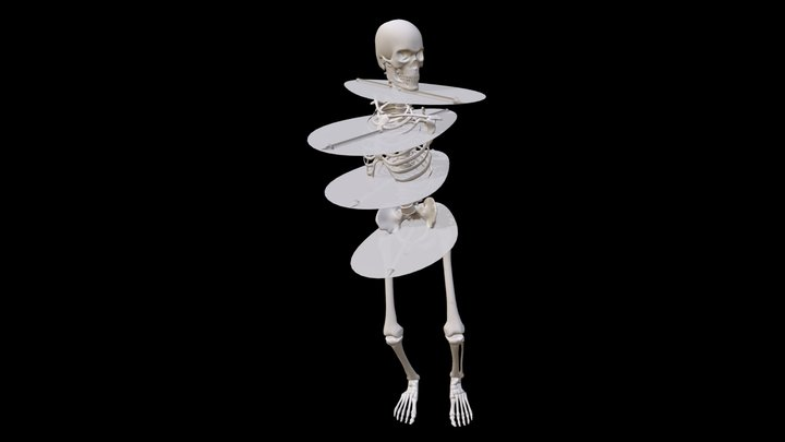 3 Bones -- Spine Action Planes 3D Model