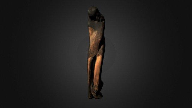 Racine sculptée 3D Model