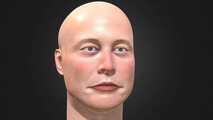 Elon Musk 3D portrait 3D Model