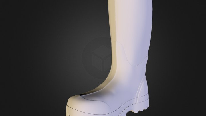 BOGS_Boot_02 3D Model