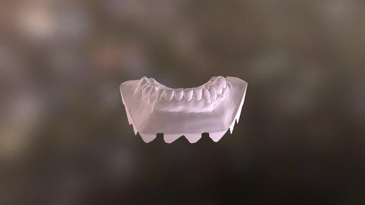Amanda Lower Jaw 3D Model