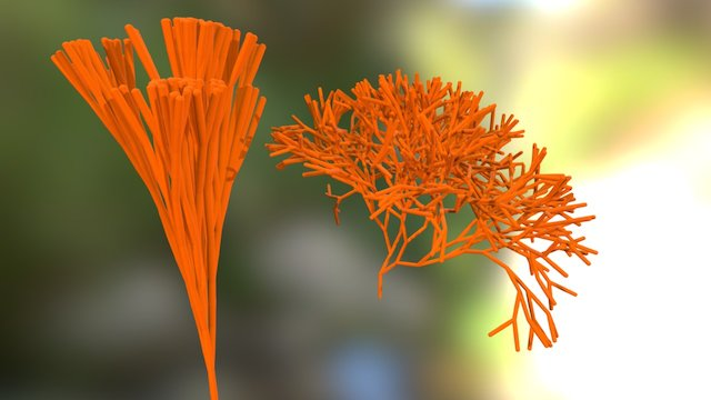 Coral (some of it, these models are heavy!) 3D Model