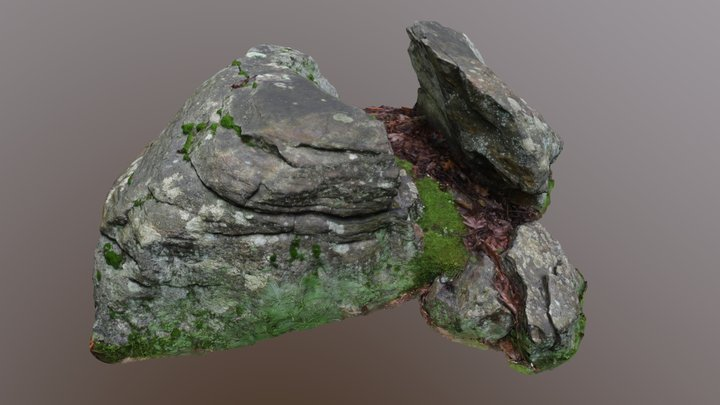 190718_pine_meadow_split_rock 3D Model
