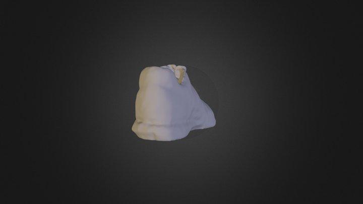 S H O E1 3D Model