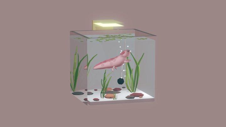 Casa De Axolotl 3D Model