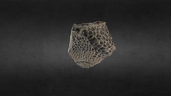 Weathered Rock 3D Model