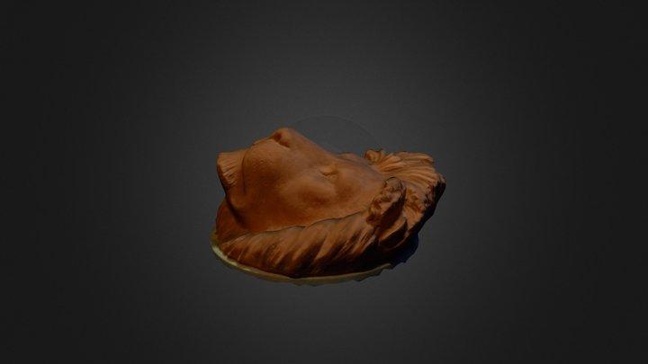Lion_Head_03 3D Model