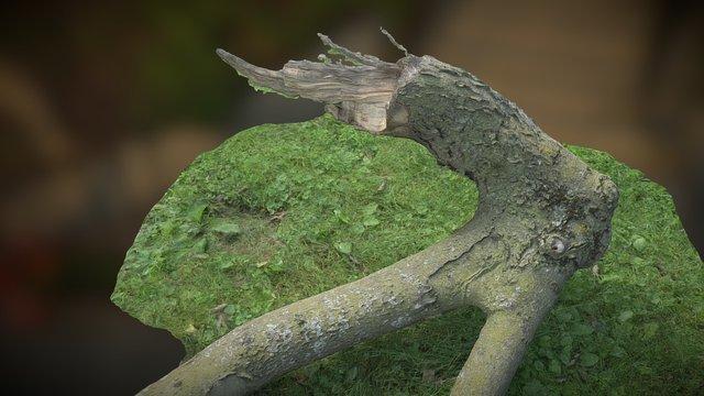 Big Log 3D Model