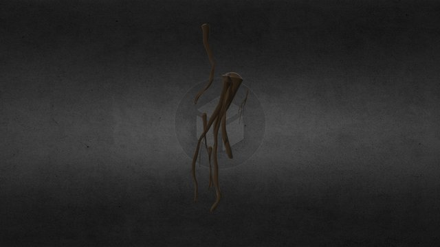 Smallground Roots 3D Model