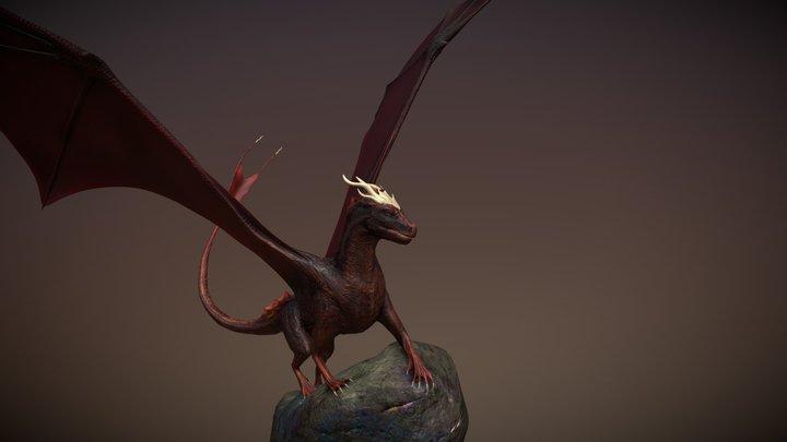 Shadow 3D Model