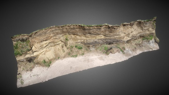 Glacial Sediments. Templetown Beach, Cooley. 3D Model