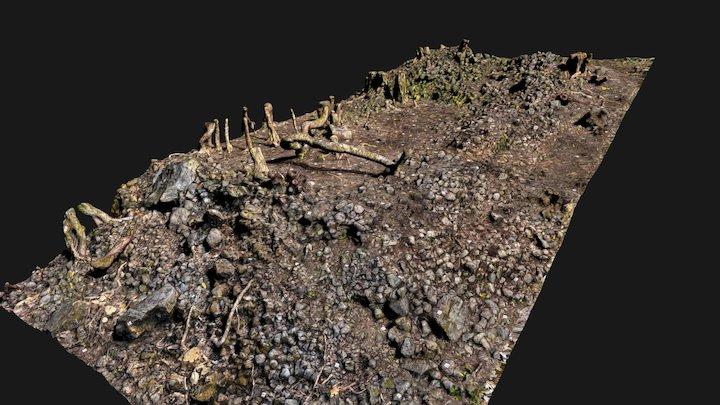Punalu'u Heiau 3 - North Side 3D Model