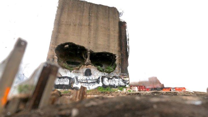 Skull Greenpoint Waterfront 3D Model
