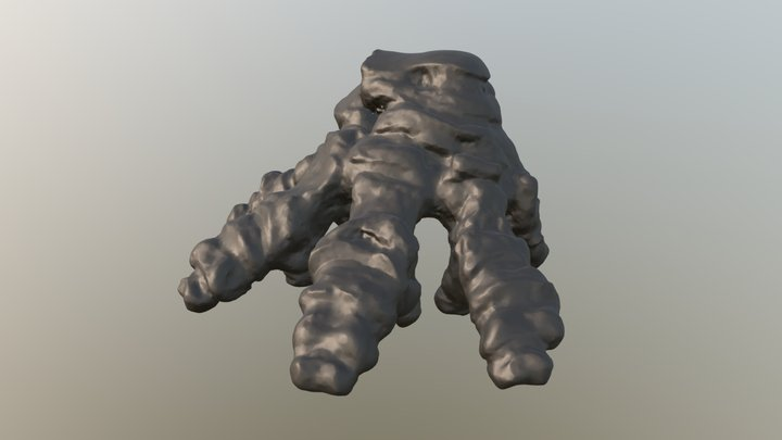 Mammut americanum foot - N. Charleston mastodon 3D Model