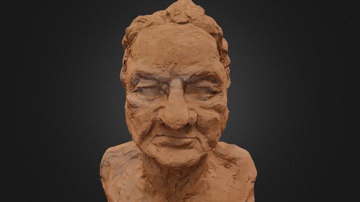 Plasticine Bust Fixed 3D Model