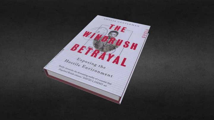 The Windrush Betrayal 3D Model