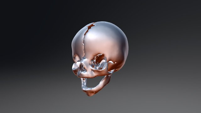 retopoBicor 3D Model