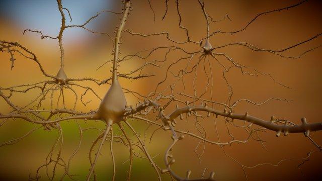 Multiple_AP_Neurons_v1 3D Model