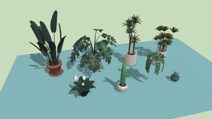 Simple Indoor plants 3D Model