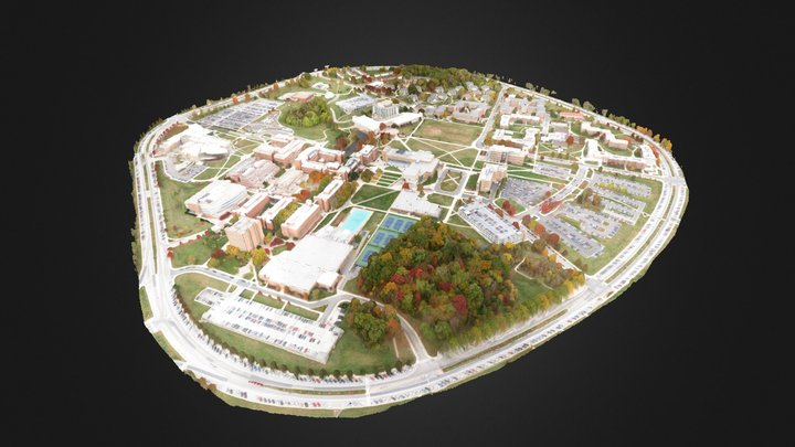 MAIN UMBC Aerial Ecosynth Scan 3D Model