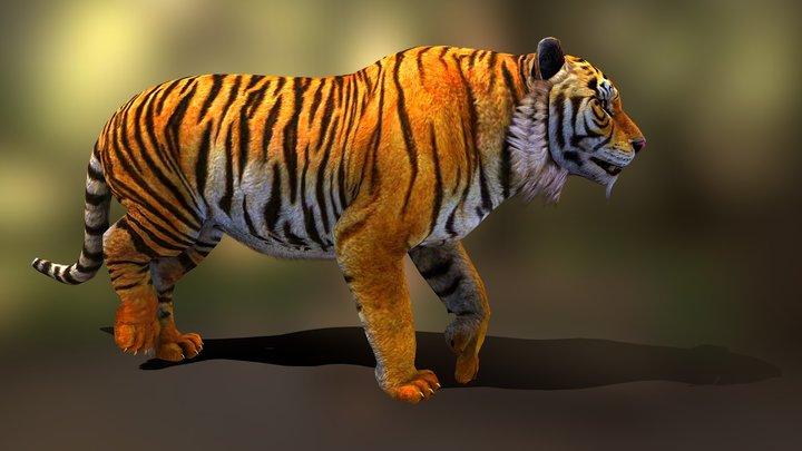 tiger walk v02 3D Model