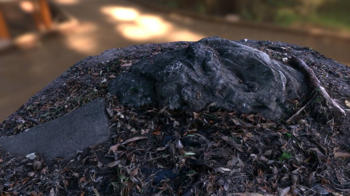 Photogrammetry Test 3D Model