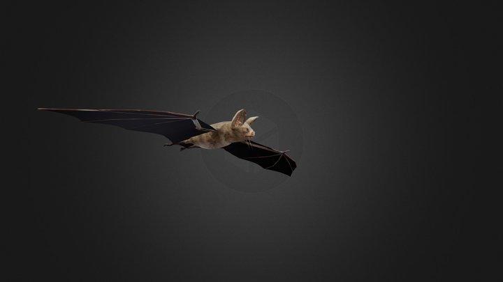 Uploads Files 317 Bat FBX 3D Model
