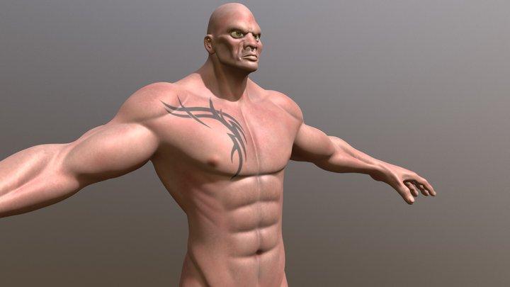 Muscle Study 3D Model