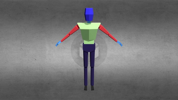 LowPoly Humanoid Rig 3D Model