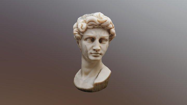David. Miguel Angel. 3D Model