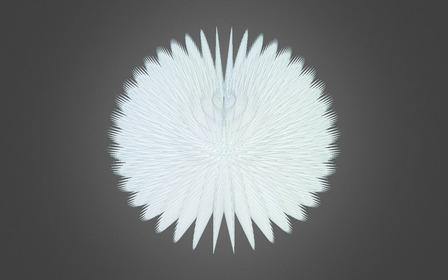 Urchin1 3D Model