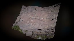 Vallée des merveilles (France) - Rock art (001) 3D Model