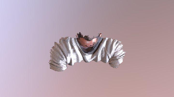 Matt 3D Model